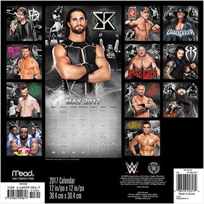 WWE 2017 Wall Calendar
