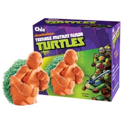 Chia Teenage Mutant Ninja Turtles Planter