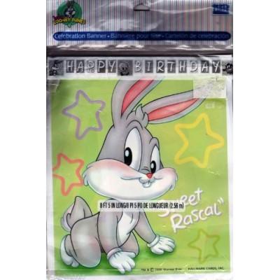 Baby Looney Tunes 'Playful Pals' Happy Birthday Banner (1ct)