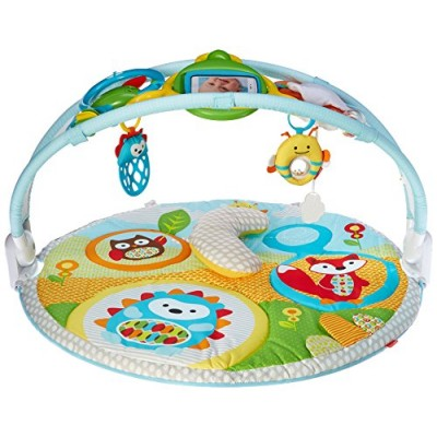 Skip Hop Explore-and-More Amazing Arch Activity Gym, Multi